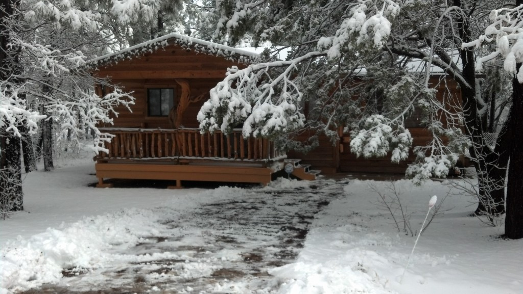 Starbright Cabin Rental Pinetop White Mountain Things